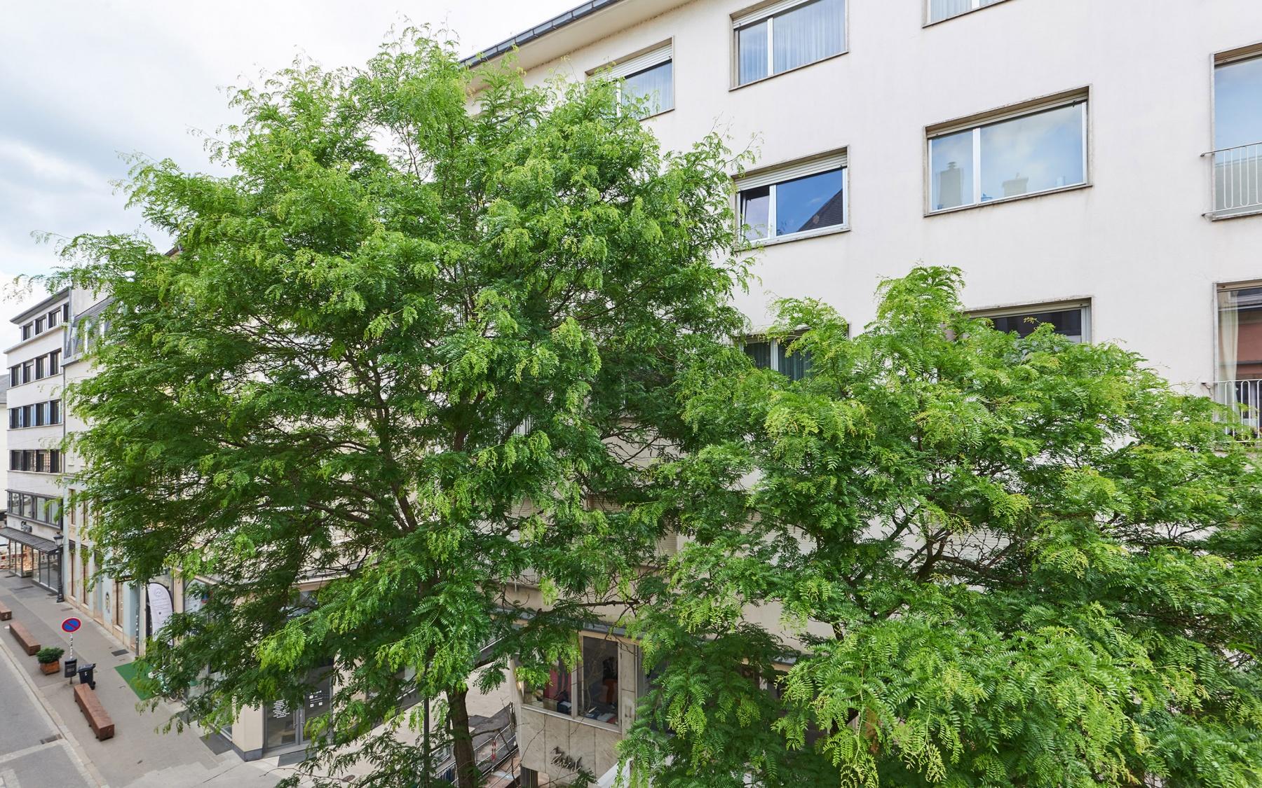 Appartement à Luxembourg-Centre