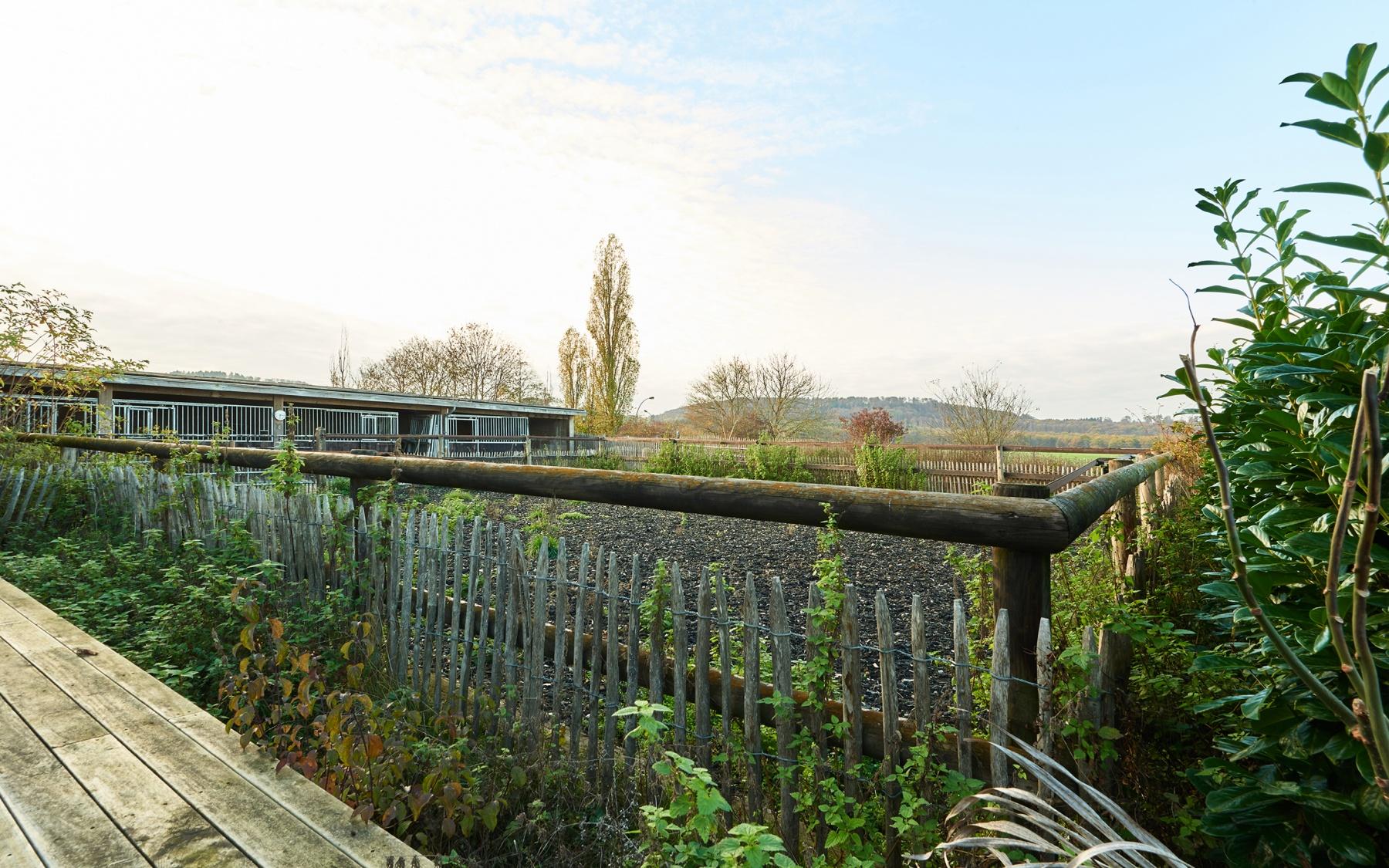 Corps de ferme à Imbringen - commune de Junglinster
